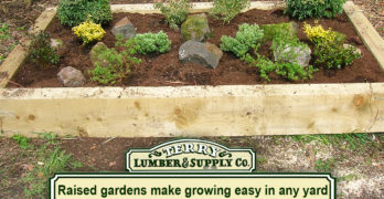 Raised gardens make growing easy in any yard